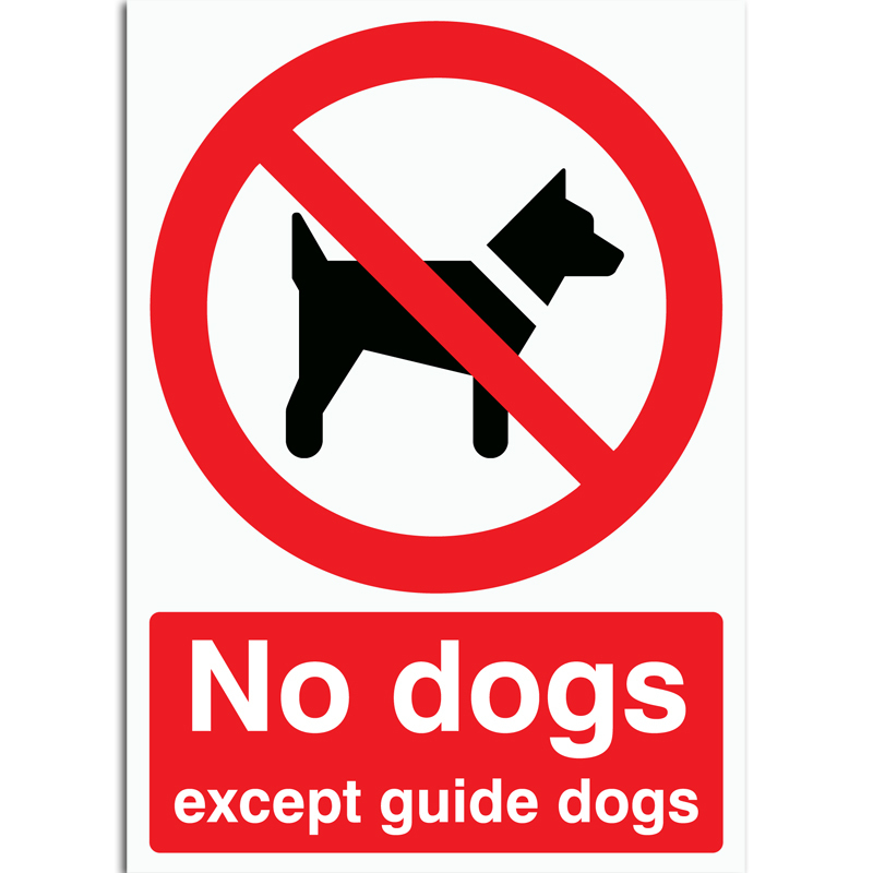 No dogs except guide dogs Sign rigid plastic