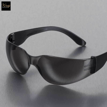 Portwest Smoked Lens Wrap Around Spectacle PW32